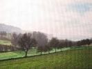 Bergische Landschaft I, 2019, Öl auf Leinwand, 40 x 60_1