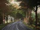 Herbstliche Allee, Öl auf Leinwand, 50 x 70_1