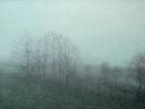 Morgenstimmung Nebel, Öl auf Leinwand, 90 x 120