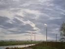 Niederrhein bei Schenkenschanz, Öl auf Leinw., 70 x 70