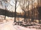 Winter/ Siebengebirge, 2019, Öl auf Leinwand, 24 x 30_1