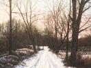 Winter/ Siebengebirge, 2019, Öl auf Leinwand, 40 x 40_1