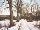 Winter/ Siebengebirge, 2019, Öl auf Leinwand, 40 x 50_1
