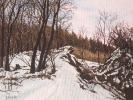 Winter/ Siebengebirge III, 2019, Öl auf Leinwand, 24 x 30_1